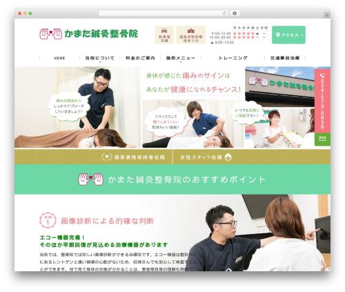 Original Style - 1column template WordPress - kamata-shinkyu-seikotsu.com