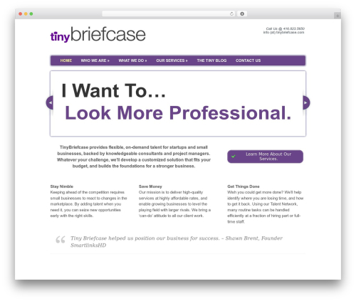 Delegate business WordPress theme - tinybriefcase.com
