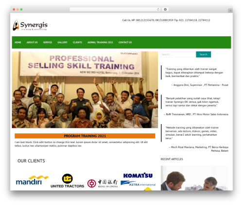 FlatMarket theme WordPress - synergistraining.com