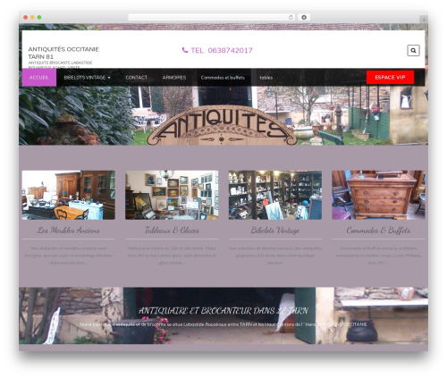 Foodeez Lite free WordPress theme - antiquites-occitanie.com