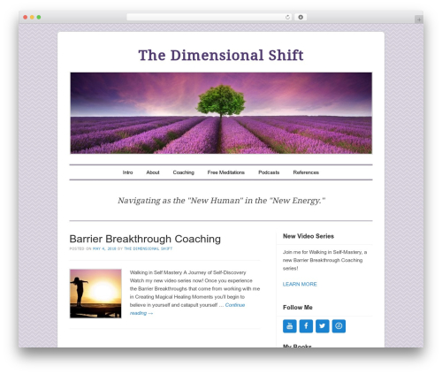 Forever best WordPress template - thedimensionalshift.com