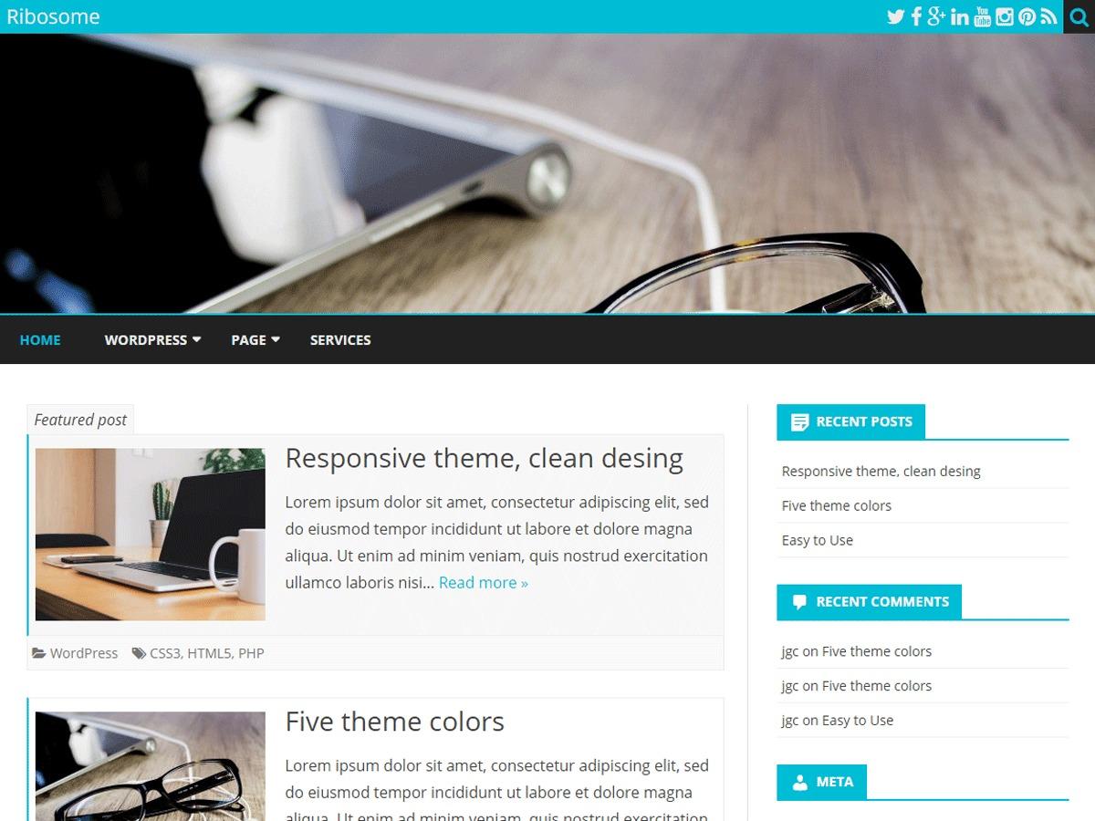 WordPress website template ribosome-Child