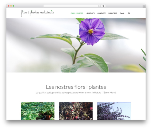 Eco Press theme WordPress - florsiplantesmedicinals.com