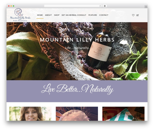 Themify Shoppe WordPress website template - mountainlillyherbs.com