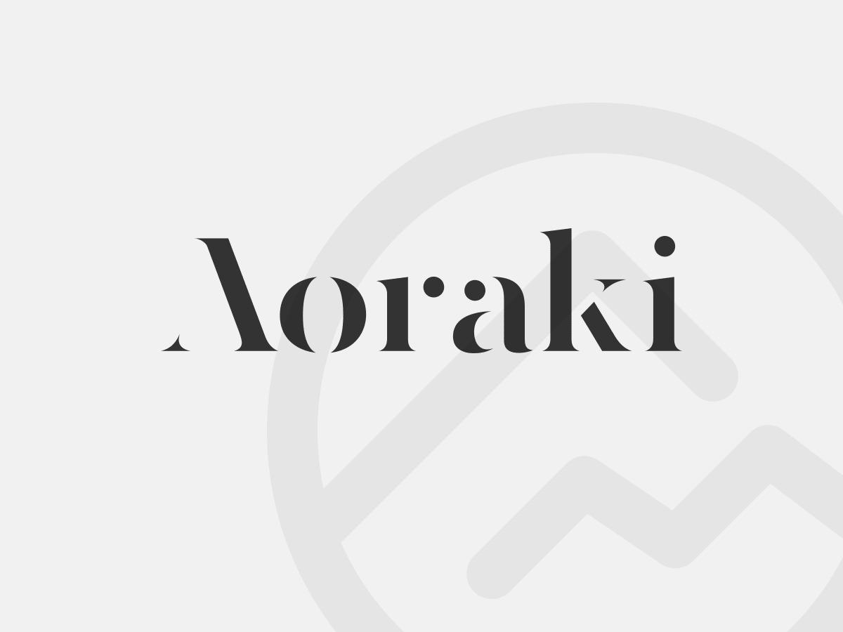 Aoraki company WordPress theme