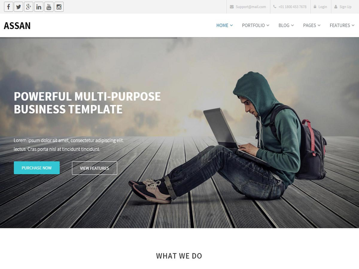 Assan WP theme