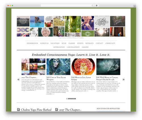 Best WordPress template Elemin - theyogaboutique.co.uk