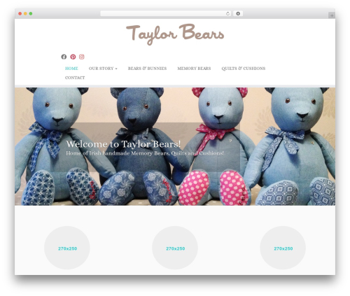 Customizr WordPress theme free download - taylorbears.ie
