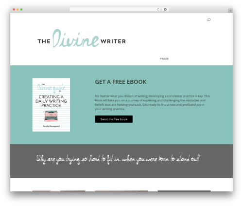 Divi WordPress theme - thedivinewriter.com