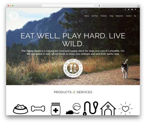 "Free WordPress Pixel Cat – Facebook Pixel (Formerly ""Facebook Conversion Pixel"") plugin - thehappybeast.com"