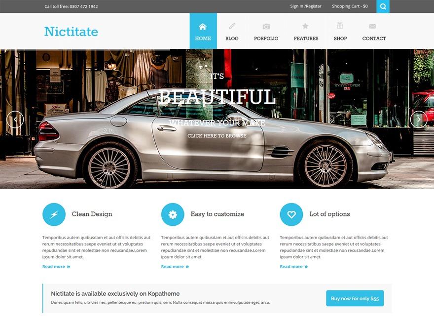 Nictitate best portfolio WordPress theme