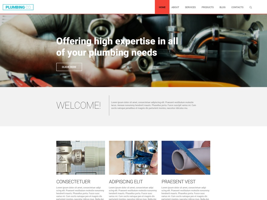 WordPress theme theme55759