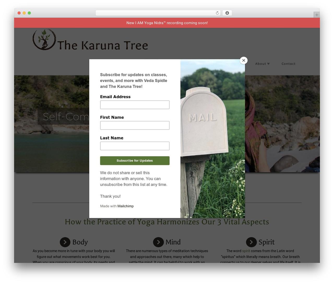 X premium WordPress theme - thekarunatree.com