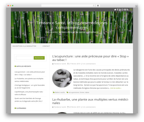 ZeroGravity WordPress template free - tendancesante.net