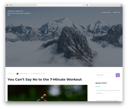 Cronus theme WordPress - debughealth.com