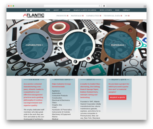 Dizzy business WordPress theme - atlanticgasket.com