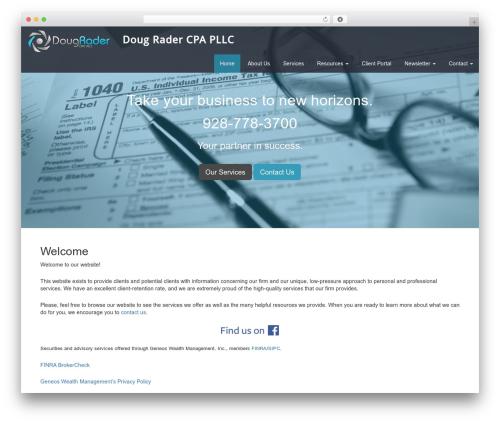 Theme WordPress Customized3 - radercpa.com