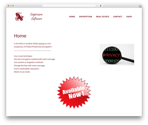 Madison WordPress theme - capricorn-software.com