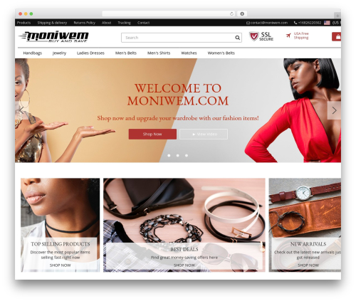 Rembrandt WordPress theme - moniwem.com