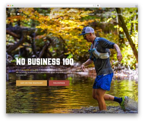 Salient company WordPress theme - nobusiness100.com