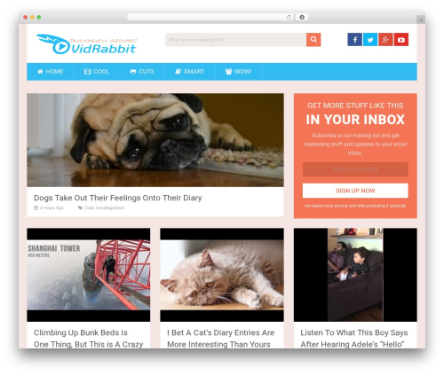 SociallyViral by MyThemeShop WordPress shop theme - vidrabbit.com
