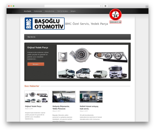 Template WordPress Link - bmcbasoglu.com