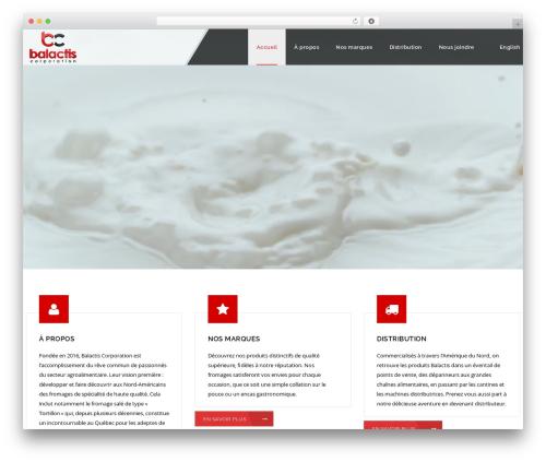Veda best WordPress theme - balactis.com