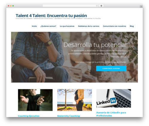 Ascension top WordPress theme - talent4talent.com