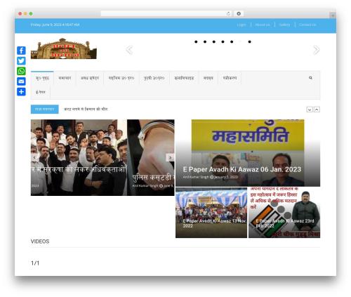 WordPress gallery-video plugin - avadhkiaawaz.com
