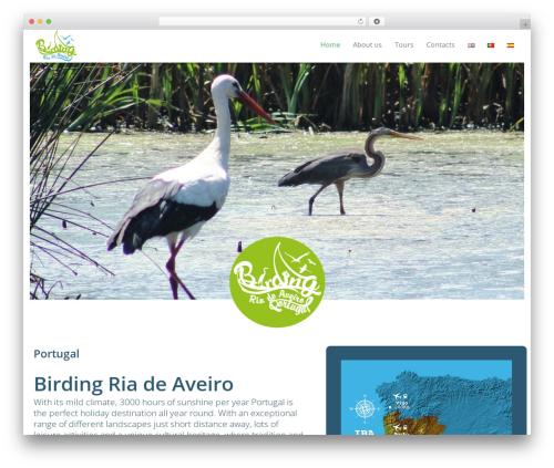 Leadinjection WordPress theme - birdingriadeaveiro.com