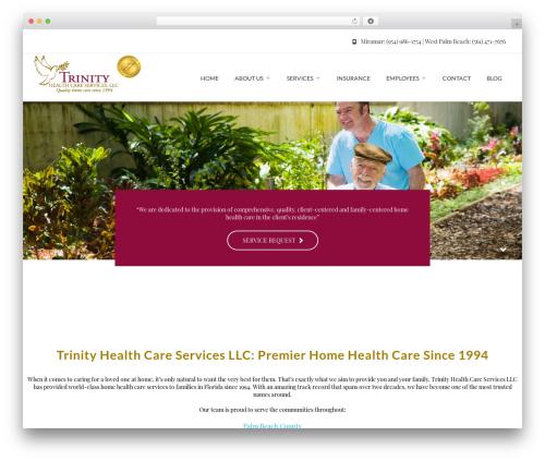 Theme WordPress Regina - thcsi.com