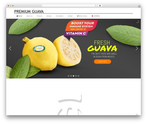 X WordPress theme - premiumguava.com