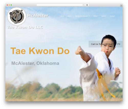 Martial Arts V8 theme WordPress - mcalestertkd.com