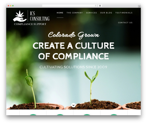One Page Express free WP theme - cocannabisconsultant.com