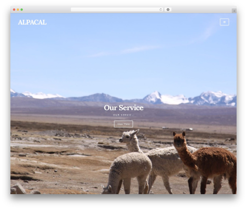 WP template lax - alpacal.com