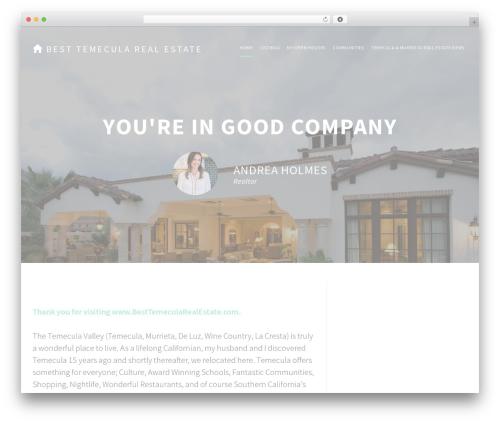 Agent Focused Pro best real estate website - besttemecularealestate.com