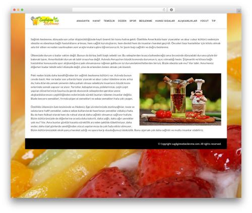 Theme WordPress The REX - sagligimvebeslenme.com