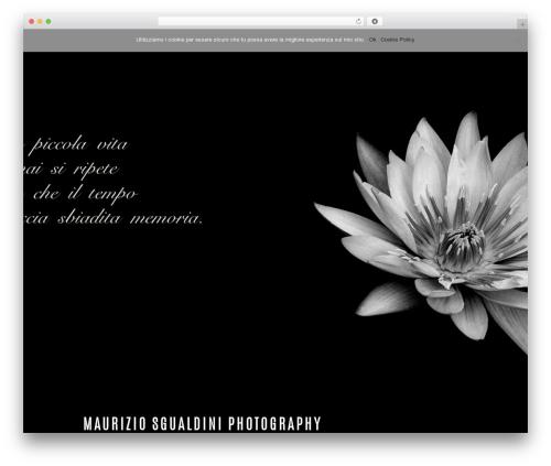Twenty Seventeen theme WordPress free - mauriziosgualdini.com