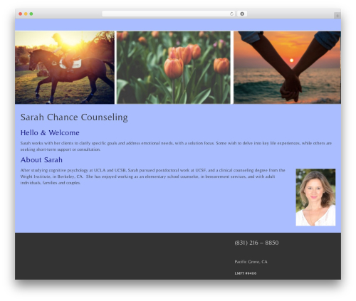 BlueGray theme WordPress free - sarahchancecounseling.com