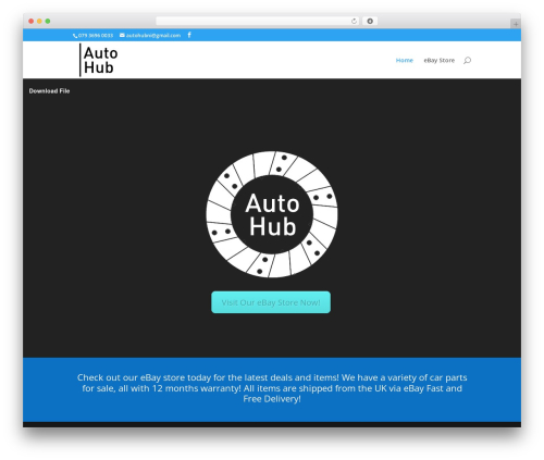 Divi WordPress theme - autohubni.com