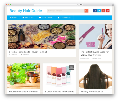 SociallyViral by MyThemeShop WordPress template - beautyhairguide.com