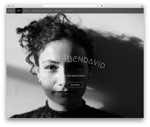 Arcade Basic WordPress template free - orlybendavid.com