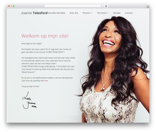 Best WordPress theme Hudson - joannetelesford.com
