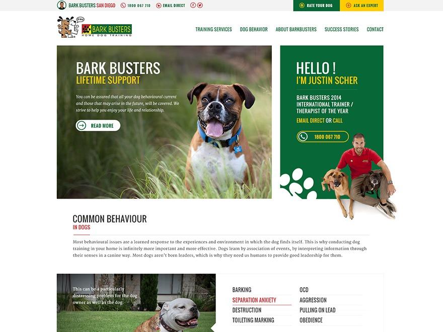 bigdogbroadcast2 WordPress page template