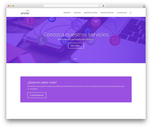 Divi best WordPress template - ameliats.com