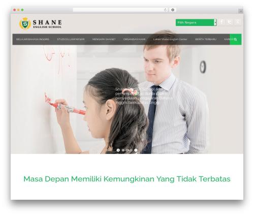 Effektive WordPress theme - shane-indo.com