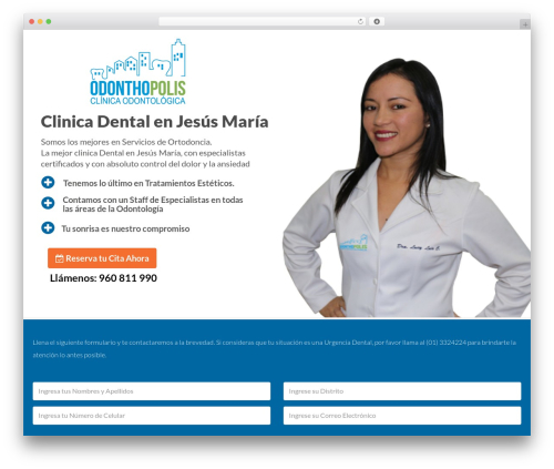Leadinjection premium WordPress theme - clinicadentalenjesusmaria.com
