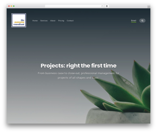 WordPress theme Businessx - theawesomeconsultant.com