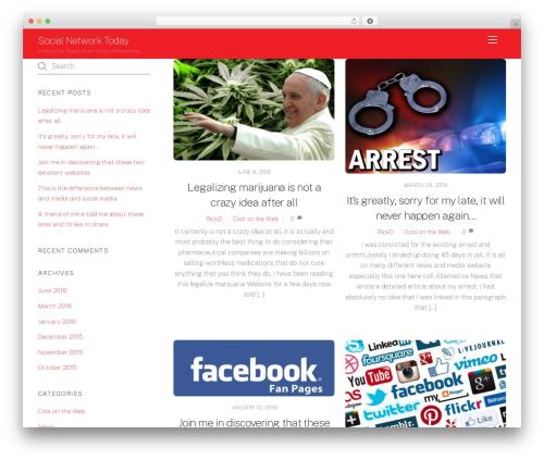 WordPress theme Themify Ultra - socialnetworktoday.com