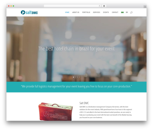 Divi best WordPress template - saltdmc.com